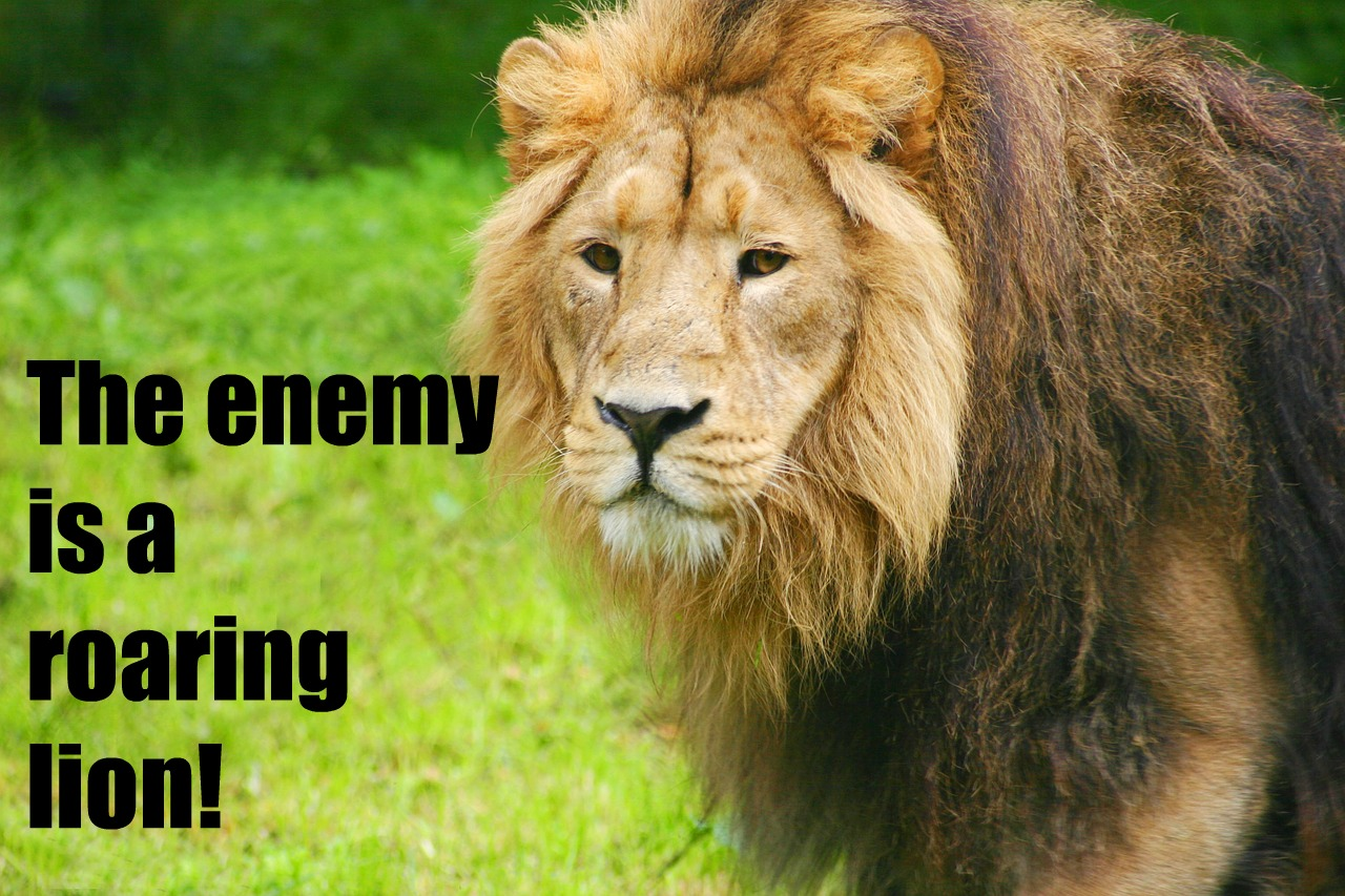 The Real Enemy -